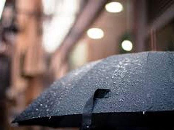 umbrella sweepstakes