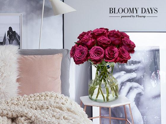 Blumen gewinnen zum Muttertag! Gewinnspiel