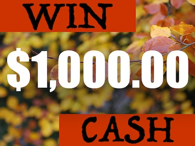 Sweepstakes, contests, giveaways - Win money, prizes and