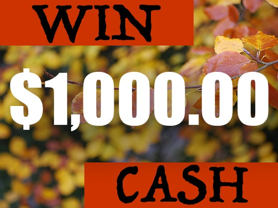 $1000 Cash September 2019 sweepstakes