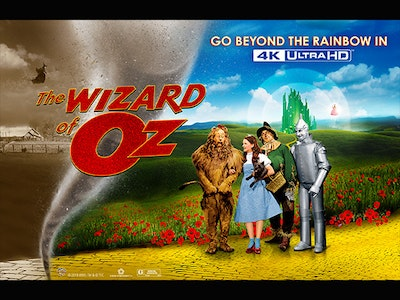 Wizard of Oz sweepstakes
