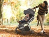 évolur Vogue Stroller sweepstakes