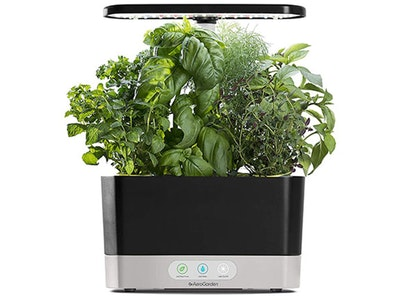 Aerogarden!  sweepstakes