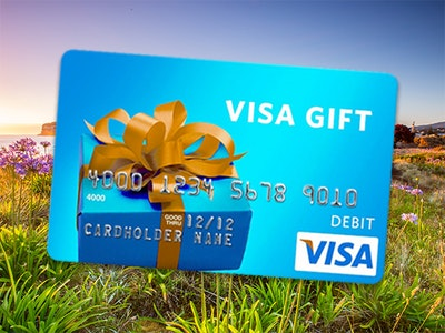 Visa Gift Card - April 2020 Week #4 sweepstakes