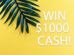 Win  1000 cash