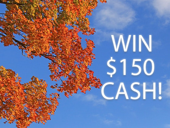 $150 Cash sweepstakes