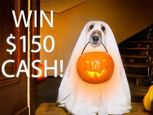 150 cash prize