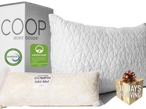 Coop pillows 30 days of giving