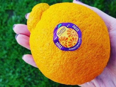 Delicious Sumo Citrus®! sweepstakes