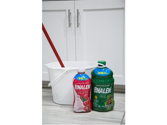 AlEn USA Cleaning Bundle! sweepstakes
