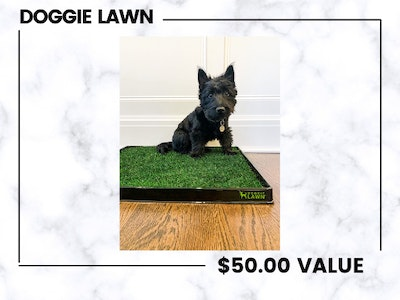 Doggie Lawn!  sweepstakes