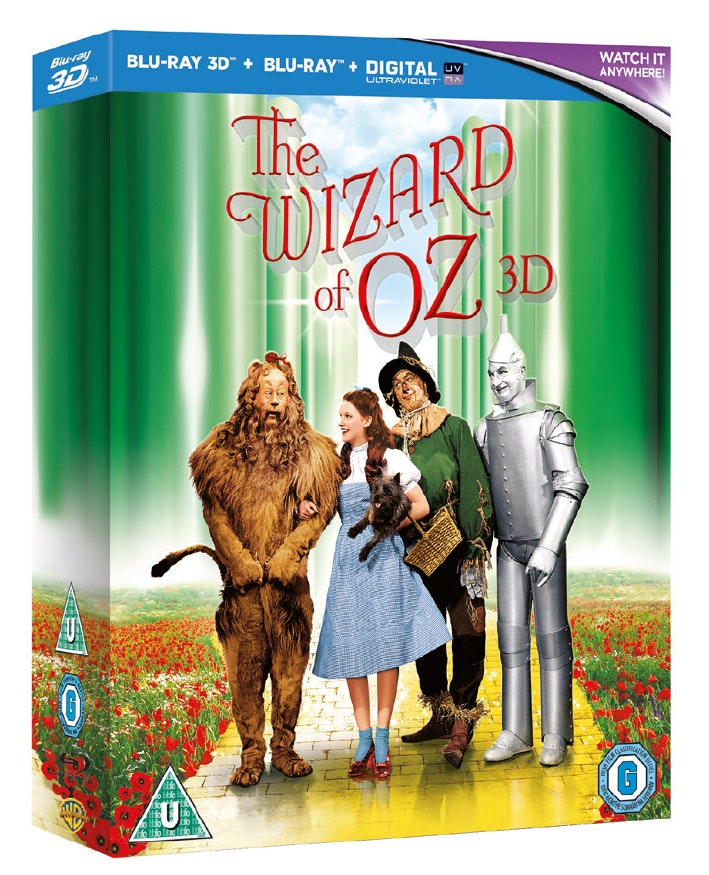 Wizard 3d 3d