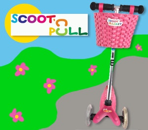Scootbasket