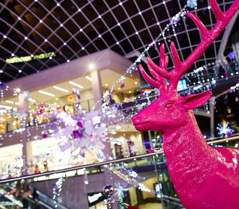 Leeds reindeer2014 56