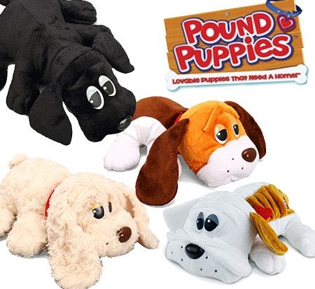 Pound puppies small