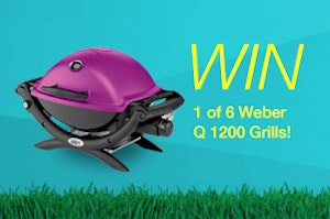 Weber grill small 1