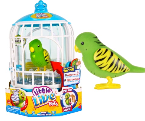 Parrot toy giveaway