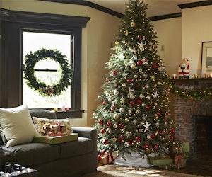 Tree classics grand fir giveaway