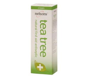 Tea tree jpg high res 1
