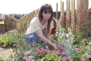 Building garden