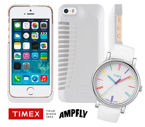Timexampfly