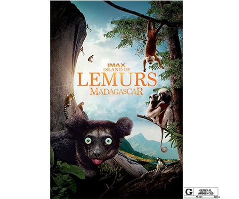 Island of lemurs sm