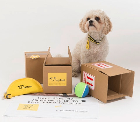Dogs Trust Doggy Moving Day Kits sweepstakes